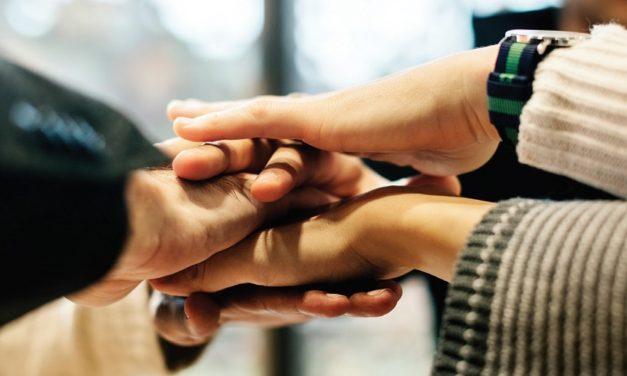 ZLTO: kloppend hart voor leden